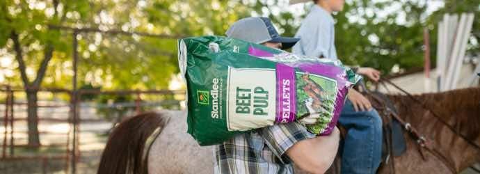 Beet Pulp for Horses – Part 1