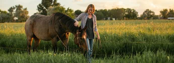 Feed Your Passion, Feed Your Horse
