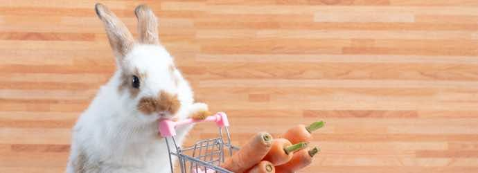 Grocery Shopping for Rabbit Food
