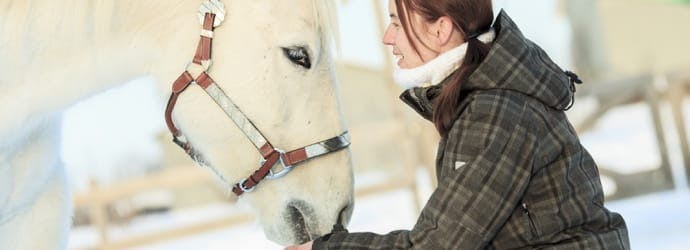 How Winter Affects Horses - Temperatures & Feeding