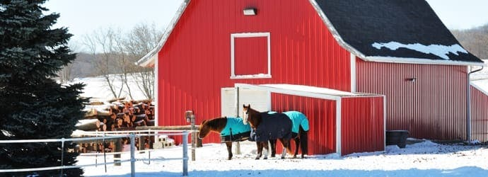 How much hay you need to store for the winter months?