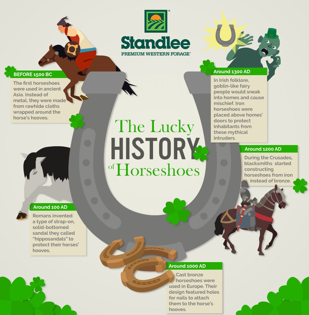 The Lucky History of Horseshoes
