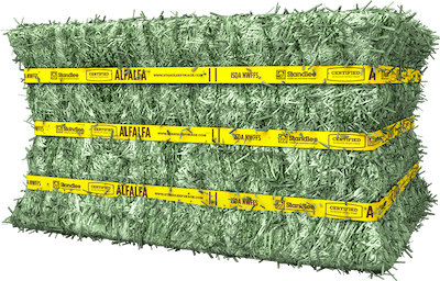 Certified Alfalfa Compressed Bale Product Photo