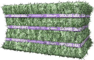 Premium Orchard Grass Compressed Bale Product Photo