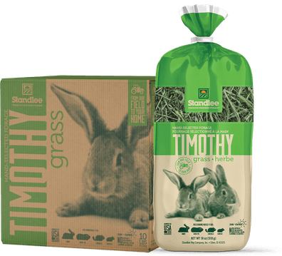 Hand-Selected Timothy Grass Product Photo