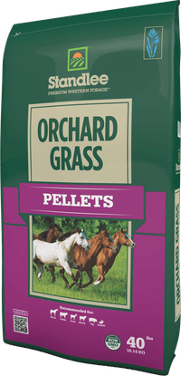 Premium Orchard Grass Pellets Product Photo