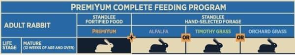 Adult Rabbit Feeding Program Chart