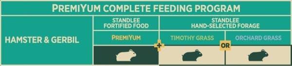Hamster and Gerbil Feeding Program Chart