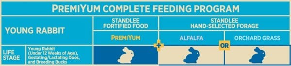 Young Rabbit Feeding Program Chart
