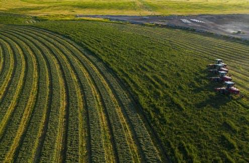 Plowing field
